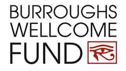 Meet the Newest TON/Burroughs Wellcome Fund Fellows